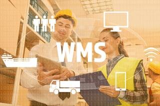 WMS-1.jpg